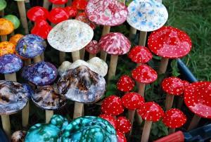 ciuperci halucinogene