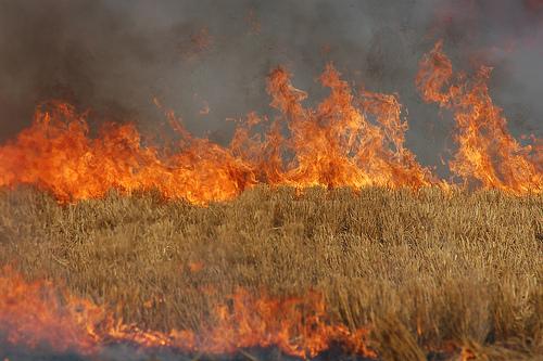 Intervenții ISU Neamț la înecați, spânzurați și incendii!