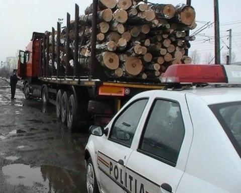Un TIR plin cu lemne fără acte a fost confiscat de polițiști la Tarcău