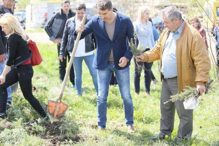 Ionel Arsene, acţiune de plantare de arbori în zona unde va fi construit un complex de servicii sociale de 22 milioane lei